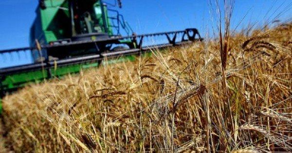 Agricultorii sunt îndemnați să depună în avans cererile pentru subvenționare. Valoarea unui proiect nu va depăși un milion de lei